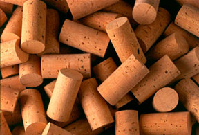 From Bark to Wine Stopper to Footwear -- the Story of Cork