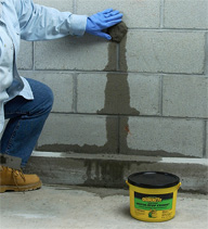 <b>Basement Water Damage: A Costly Home Repair</b>&#8220;></td> <td> <p>(<a href=