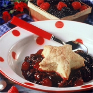 <b>Triple Your Taste Experience With Berry Cobbler</b>&#8220;></td> <td> <p>(<a href=