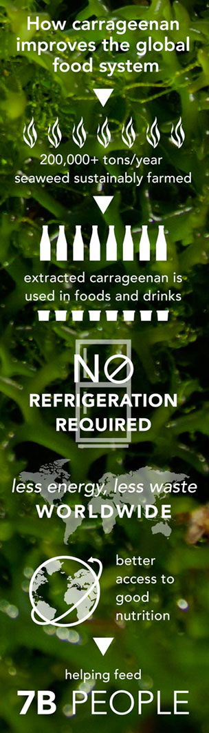 Carrageenan: Sustainability From Farm to Table