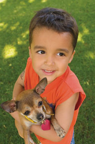 <b>Keep Your Pets Safe From Parasites and Protect Your Children From Disease</b>&#8220;></td> <td> <p>(<a href=