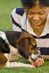 <b>Good Nutrition for the Whole Family, Even the Four-Legged Members</b>&#8220;></td> <td> <p>(<a href=