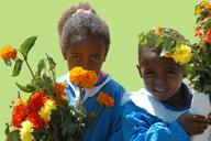 <b>Los Proyectos de Jardineria Ayudan a los Ninos  a Florecer</b>&#8220;></td> <td> <p>(<a href=
