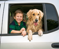 <b>Put Your Lucky Dog on NASCAR&#8217;s Raceway</b>&#8220;></td> <td> <p>(<a href=