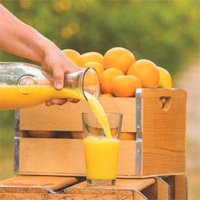 Orange You Smart? Florida Orange Juice Is Good for You