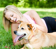 <b>How to Ensure the Best Care for Your   Pet</b>&#8220;></td> <td> <p>(<a href=