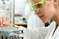 <b>Expanding and Recruiting: Roche Pharma Research Seeks Scientists</b>&#8220;></td> <td> <p>(<a href=