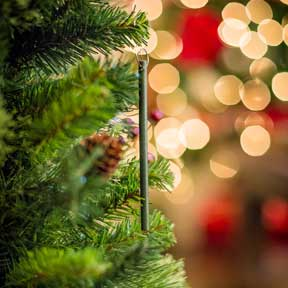 Scent-imental: Holiday Smells Evoke Happy Memories