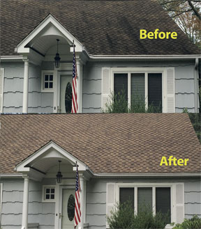 Clean Your Roof Now, Save Time and Money Later