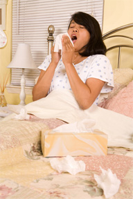 <b>Protect Your Family From Swine Flu</b>&#8220;></td> <td> <p>(<a href=