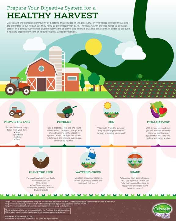 Maintain Gut Health For A Healthy Harvest