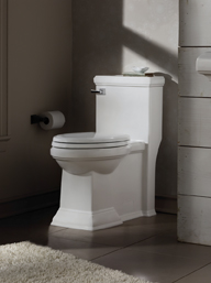 <b>Tips for Toilet Shopping</b>&#8220;></td> <td> <p>(<a href=