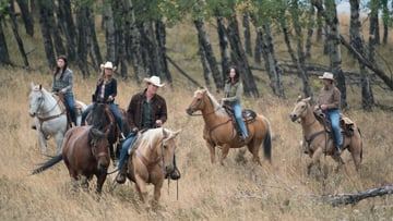 Discover Heartwarming Family Drama with Heartland on UPtv