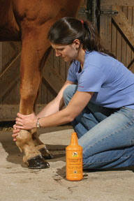 <b>Animal Care Products for People: Yay or Neigh?</b>&#8220;></td> <td> <p>(<a href=